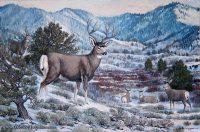 Deer by Wendell B. Johnson