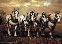 Percherons by Wendell B. Johnson