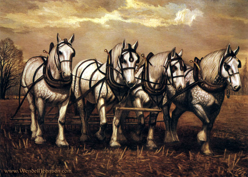 Percherons by Wendell B. Johnson